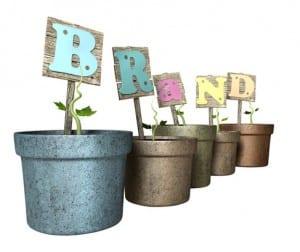 social brand development whitepaper