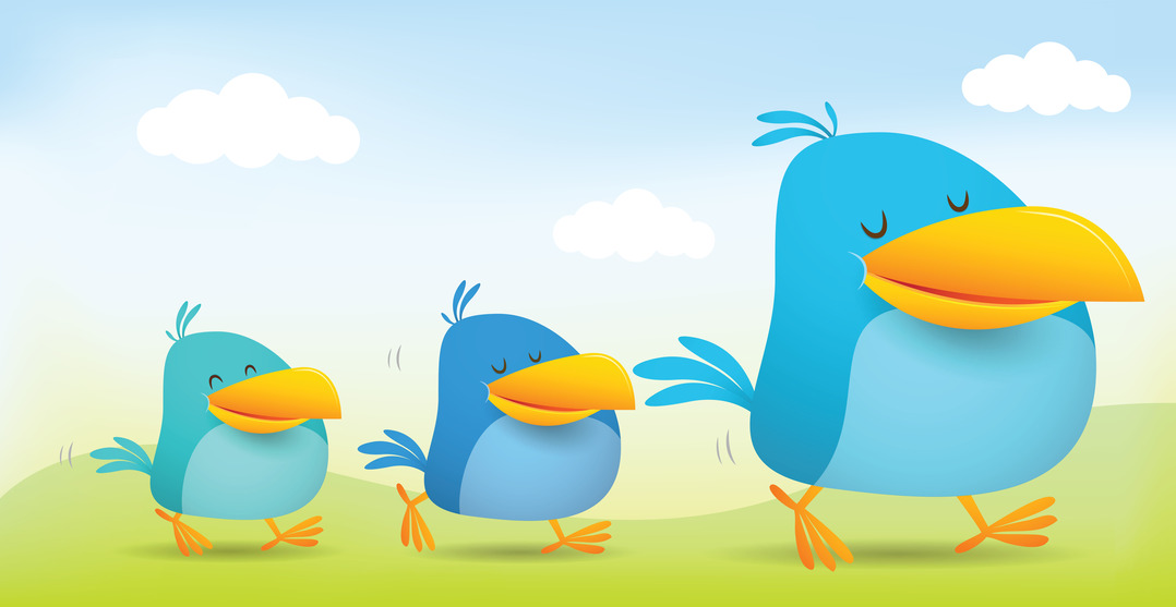 how to use twitter lists for business