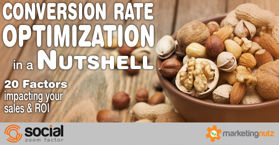Conversion Rate Optimization in a Nutshell: 20 Factors You Can't Ignore